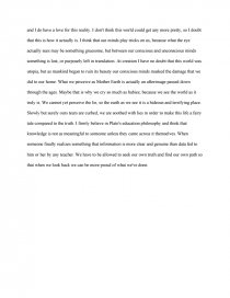 allegory of the cave reflection essay zoom zoom
