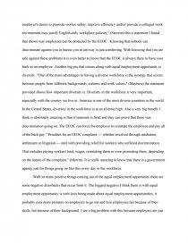 equal job opportunities essay